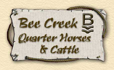 Bee Creek Quarter Horses and Cattle